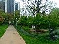 Western Illinois University (34317313772).jpg
