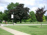 Westfield Center, Ohio 7