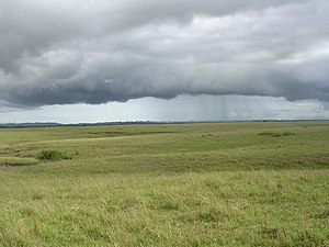 Wet season clouds over Fuiloro Plateau grasslands, with hundreds of termite mounds, Fuiloro, Lautem, Timor-Leste (26 Mar 2006).jpg