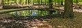 Wilde zwijnen (Sus scrofa) zoel. Locatie, Kroondomein Het Loo 01.jpg