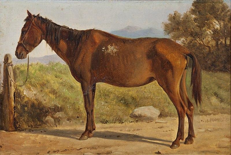 File:Wilhelm Marstrand, Rosinante, 0107NMK, 1847, Nivaagaards Malerisamling.jpg