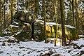 Willebadessen - 2018-03-01 - um Karlsschanze (36).jpg