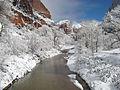 Winter in Zion (5988448745).jpg