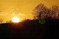 Winter sun (10313201014).jpg