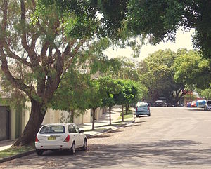 Wolseley Road - Wolseley Road, Point Piper