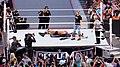 WrestleMania 31 2015-03-29 17-20-31 ILCE-6000 7468 DxO (17852809821).jpg