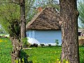 Zalipie museum - an old whitewashed cottage with thatched roof of the Felicja Curyłowa's farm.jpg