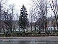 Zambrów rynek1.jpg