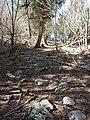 """Bruce Trail"" (34871055076).jpg"