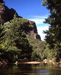 Wollemi National Park Protected area in New South Wales, Australia