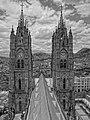 (La Basílica del Voto Nacional, Quito) pic. t.JPG