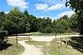 Étang du Perray au Perray-en-Yvelines le 3 août 2017 - 46.jpg