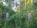 Õisu mõisa kalmistu 01.JPG