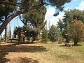 Κτήμα Μερκούρη - panoramio (11).jpg