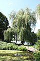 Андрушівський парк-D 13.jpg