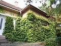 Будинок, в якому жив і працював А.А. Коцка, народний художник УРСР 3.JPG