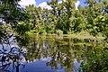 Гідропаркові озера 03.jpg