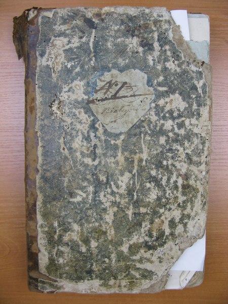 File:ДАЖО 178-51-95. 1751-1801 роки. Метрична книга Білогородського костелу.pdf