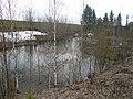 Затопленный карьер около деревни Красоты - panoramio.jpg