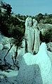Каменна сватба (Скални гъби) - Зимзелен - Природна забележителност - PZ132 No4.jpg