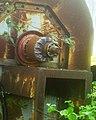 Короткозамкнутый ротор асинхронного двигателя.jpg