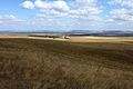 На горе Моховой - panoramio (1).jpg