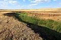 Овраг Длинный в западном направлении - panoramio.jpg