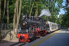 Паровоз Гр-336 на Киевской детской железной дороге