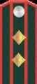 Полковник РОА.png