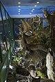 Природњачки центар Свилајнац 30.jpg