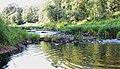 Река Вишера - panoramio.jpg