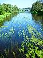 Река Лава, вид на пешеходный мост в Правдинске.jpg