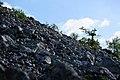 Склон горы Тельпос-Из.jpg