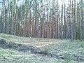 Сплав - panoramio (10).jpg