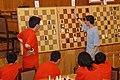 Фото №2 Ветви в деловых шахматах - для статьи на армянском языке.JPG