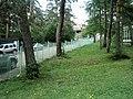 Գյուլագարակի արգելավայր, Դենդրոպարկ ... (44).JPG