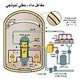 مفاعل ماء مغلي نموذجي.jpg
