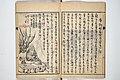仙厓義梵画 岡部啓五郎編 『円通禅師遺墨』-Surviving Paintings and Calligraphy of Sengai (Entsū Zenji iboku) MET 2013 805 07.jpg