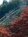 吉野ロープウェイ Yoshino Ropeway 2011.11.27 - panoramio.jpg