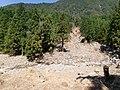土石流湯の平.JPG