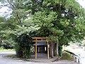 大川神社 - panoramio.jpg