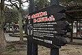 宮島の鹿は野生動物です。 優しく見守りましょう。 廿日市市 (26866343983).jpg