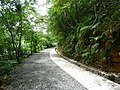 林美石磐步道 Linmei Shipan Trail - panoramio (1).jpg