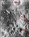 波达陨石坑及周边.jpg