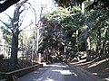 渋谷区東 - panoramio - kcomiida (4).jpg