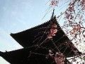 興福寺三重塔 - panoramio - Tamachatora.jpg