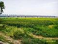黄河铁路大桥 - panoramio.jpg