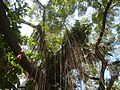 09983jfHeritage Park Bustos Tanauan Municipal Hall Bulacanfvf 01.jpg