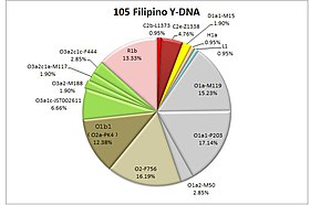 105 Filipino Y-DNA.jpg