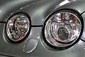 11-08-21-jaguar-im-regen-by-RalfR-04.jpg